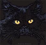 Οι μαύρες γάτες δικαιώνουν την φήμη τους