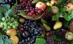 Φρούτα - εισαγωγή