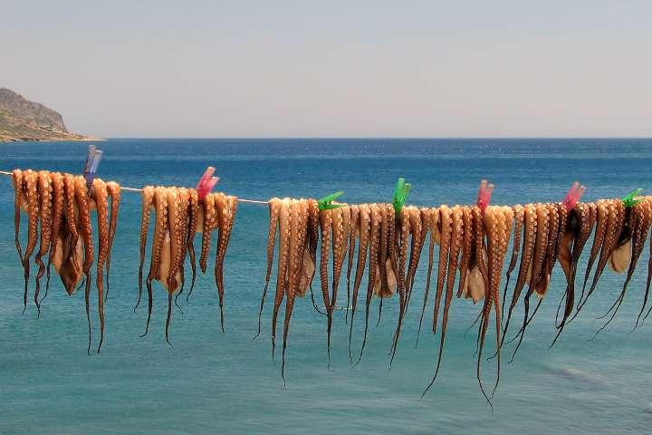 Πώς να επιλέξετε τα θαλασσινά σας