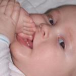 Mωρά που δεν κοιμούνται