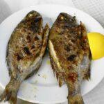 Ψάρι: μία ιδανική διατροφική επιλογή