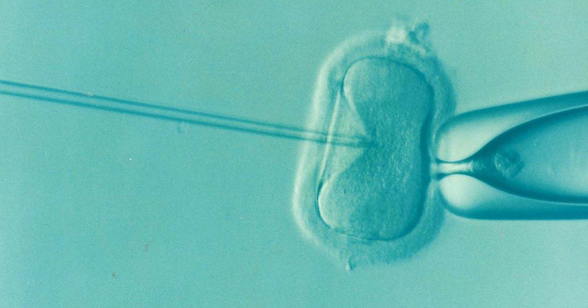 Προεμφυτευτική διάγνωση: Έγκαιρη διάγνωση γενετικών παθήσεων πριν την εγκυμοσύνη