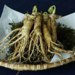 Ginseng, το φυτό της ευεξίας!